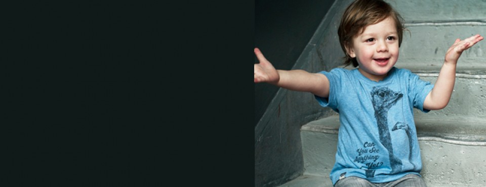 http://www.orangemayonnaise.com/en/webshop/kids/lion-of-leisure/ws-ca/ca43-br43