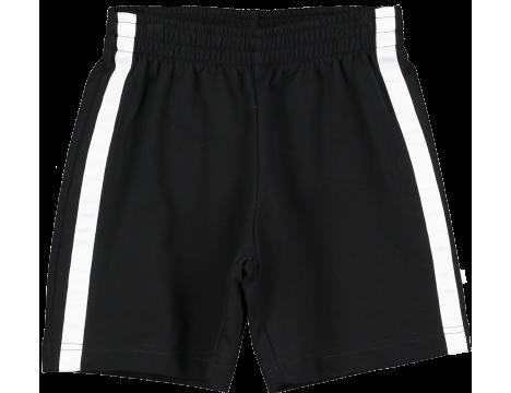 Beau LOves Shorts STRIPE