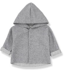 1+ in the Family WALDO Hood Jacket 1  in the Family WALDO Hood Jacket grey