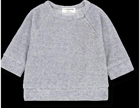 1+ in the Family GASTON Sweatshirt