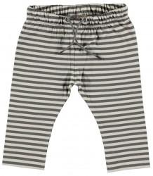 Sol Organic Baby Pants Kidscase Sol Organic Baby Pants grey