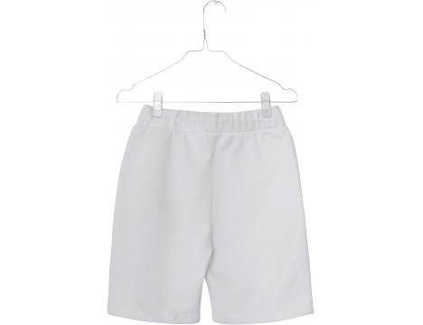 Unauthorized Leslie Shorts