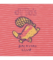 Printed Baby T-shirt SS OTTER Barn of Monkeys Printed Baby T-shirt SS OTTER