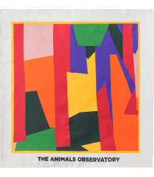 The Animals Observatory Ray Scarf GEOMETRIC The Animals Observatory Ray Scarf GEOMETRIC