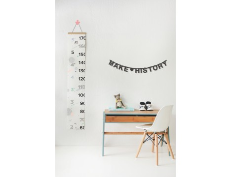 Make History Growth Chart