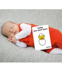 Nijntje Pregnancy Cards Milestone Cards Miffy Pregnancy Cards