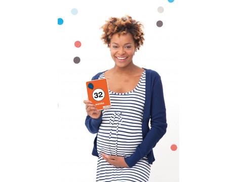 Milestone Cards Miffy Pregnancy Cards