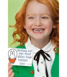 Milestone Cards Miffy Mini Cards Milestone Cards Nijntje Mini Cards