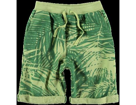 Yporqué Casual Shorts PALMS