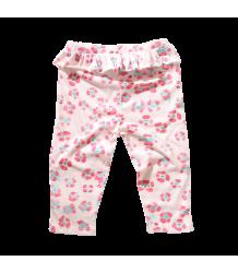 Munster Kids Lil Panther Pants - OUTLET Munster Kids Lil Panther Pants