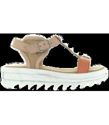 MAÁ Shoes C207 Bahamas MAa Shoes C207 Bahamas tulipan velvet