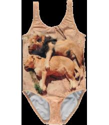 Popupshop Swimsuit SLEEPY LIONS Popupshop Swimsuit SLAPENDE LEEUW