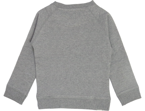 Lion of Leisure Sweatshirt BEER