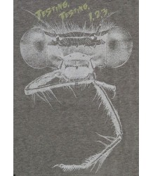 Lion of Leisure T-shirt DRAGONGFLY Lion of Leisure T-shirt SPRINKHAAN