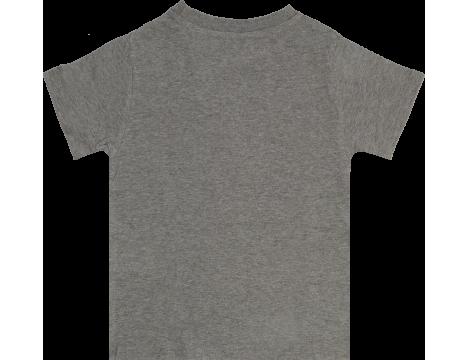 Lion of Leisure T-shirt LIBEL
