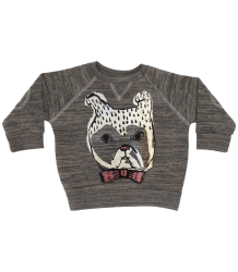 Soft Gallery Alexi Baby Sweatshirt, DOGGY Soft Gallery Alexi Baby Sweatshirt, DOGGY