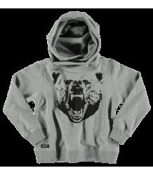 Yporqué Bear Hoodie Yporque Bear Hoodie