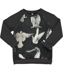 Popupshop Basic Sweat BLACK BIRDS Popupshop Basic Sweat BLACK BIRDS