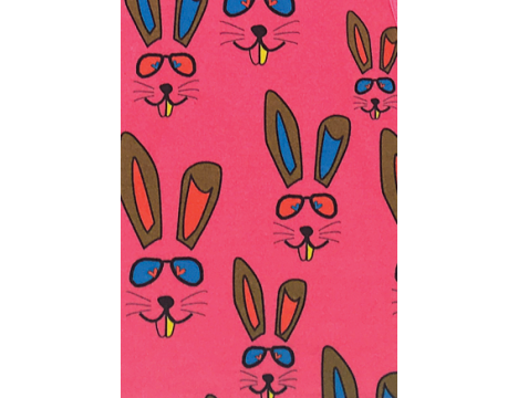 Gardner and the Gang The Pretty Dress BENNY BUNNY aop