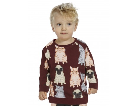 Filemon Kid Sweatshirt FAT CATS & PUG aop