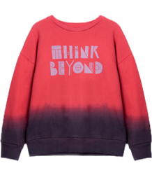 Barn of Monkeys Printed Sweatshirt THINK BEYOND Barn of Monkeys Printed Sweatshirt THINK BEYOND