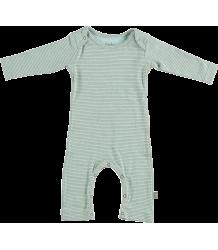 Pierre Organic NB Suit Kidscase Pierre Organic NB Suit blue